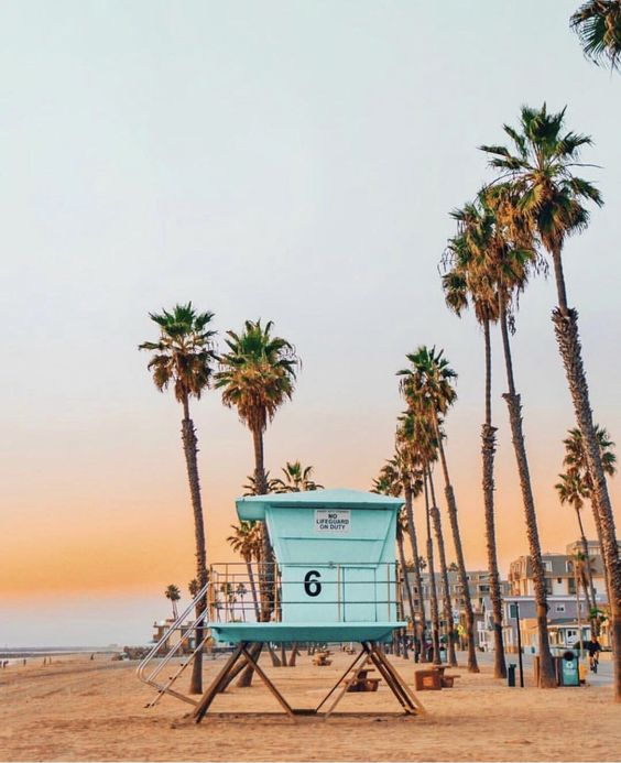 USA Road Trip Planning / Personalized California Travel Planning
